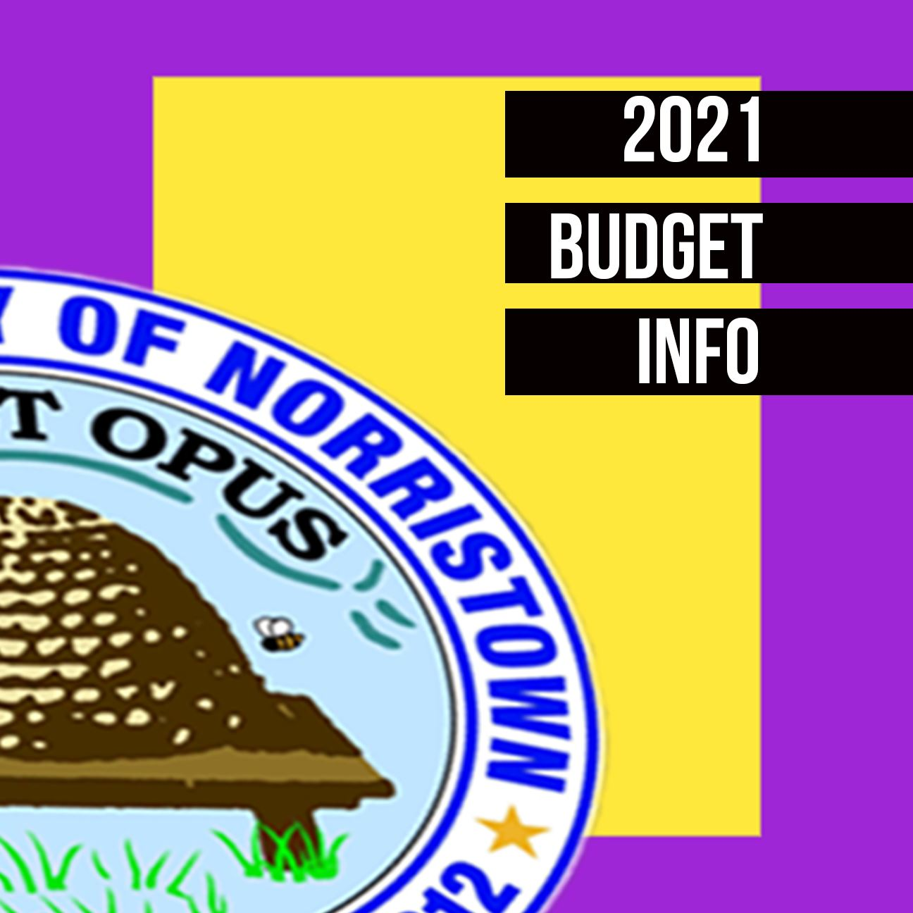 Budget info picture